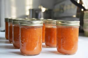 Fresh Peach Chutney Recipe